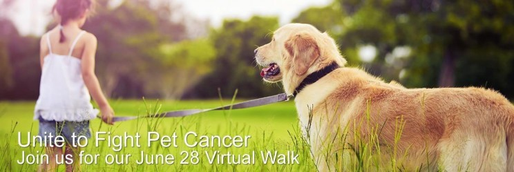 Unite to Fight Pet Cancer
