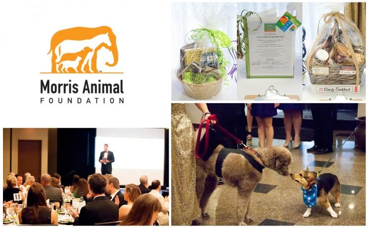 Morris Animal Foundation Partners With Radio Systems Corporation