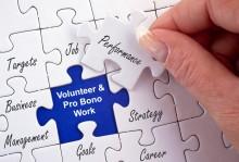 Volunteer and Pro Bono Work Puzzle