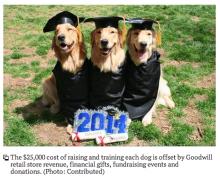 Goodwill Assistance Dog Academy graduates second class