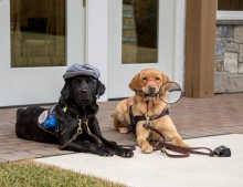 Canine Partners for Life (CPL) Unleashed & Uncorked 2018